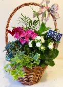 Large Mothers Day baskets