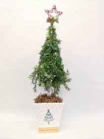 Christmas Tree Arrangement